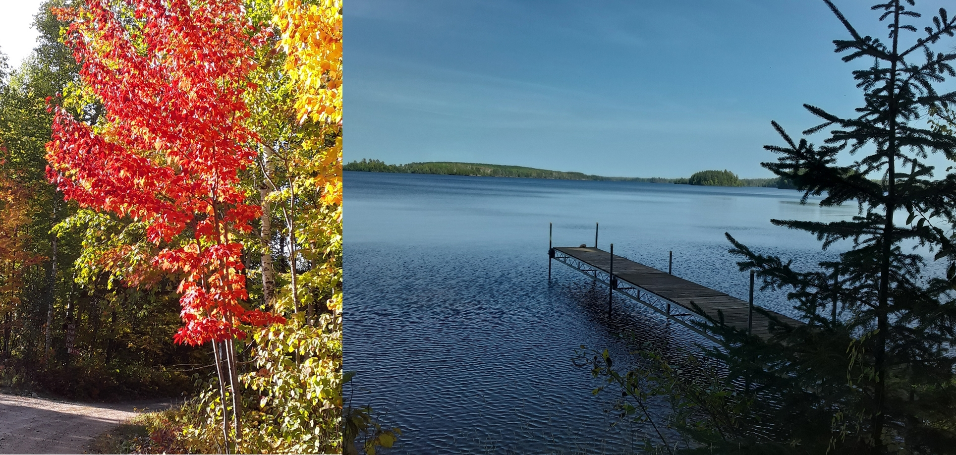 Fall Bear Island Lake montage Dave Lankinen