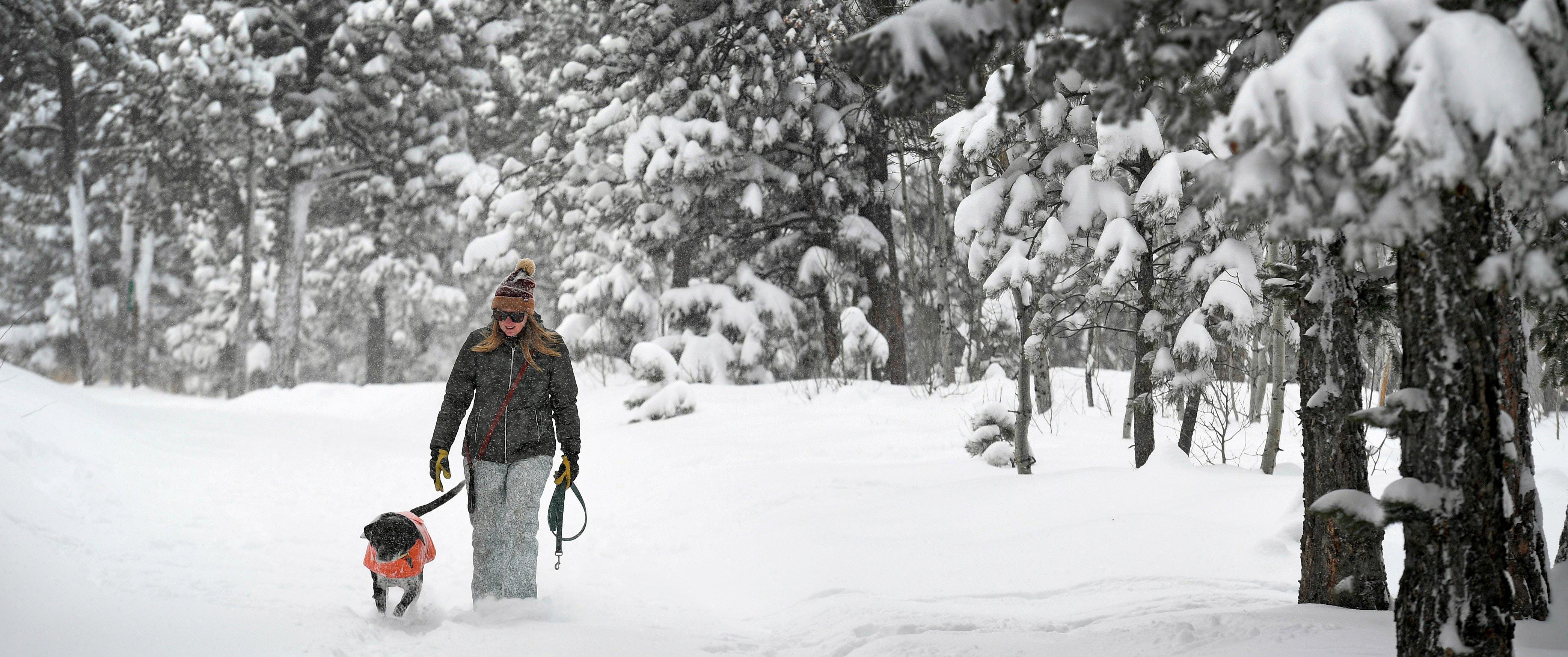 woman-walking-dog-in-snow-header